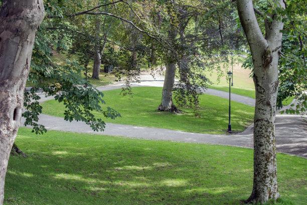 长椅,公园,户外