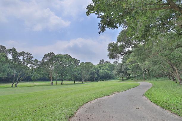小路,高尔夫球运动,格林公园