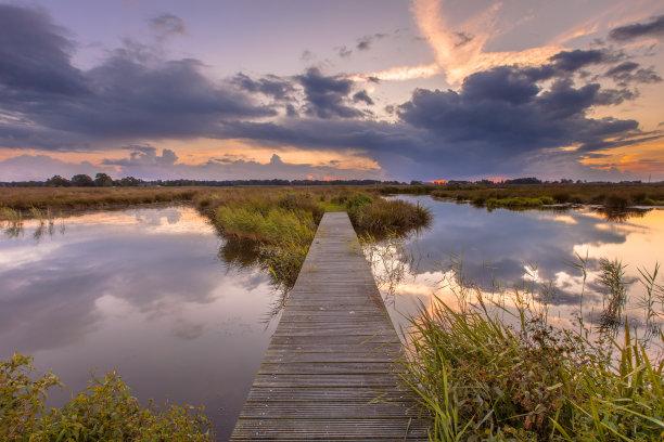 人行桥,湿地,自然美