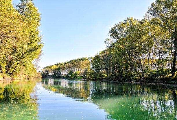 河流,亚当米勒布伦达国家公园,野生植物