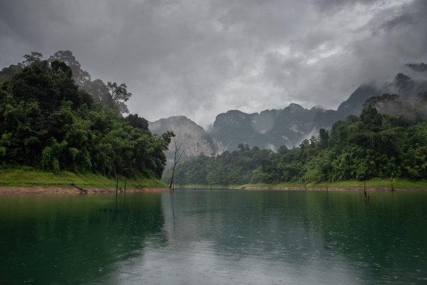 泰国,雨林,山
