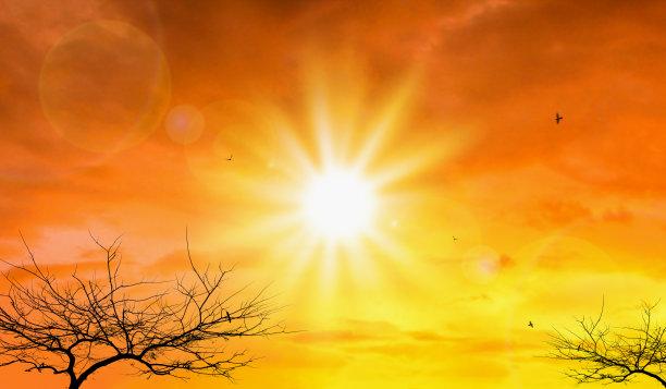 季节,夏天,热带气候