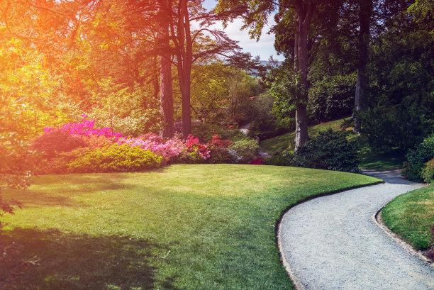 春天,自然美,园林