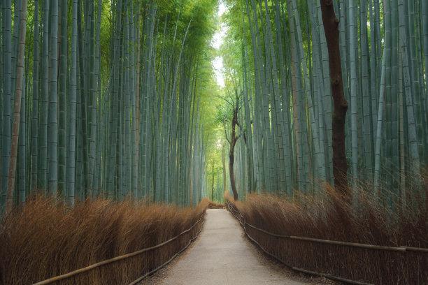 京都府小路背景