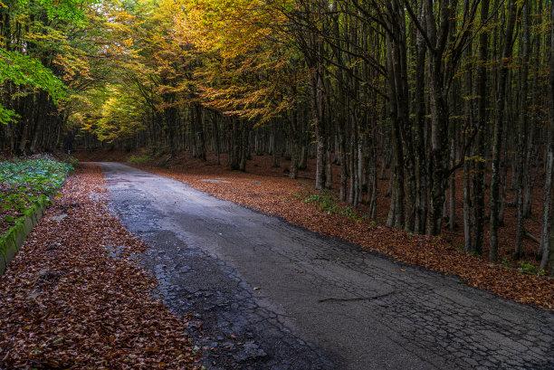 秋天风景国内著名景点
