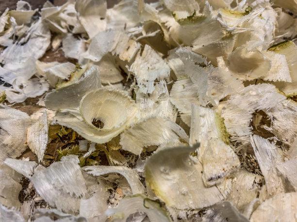 刨花卷着的木屑