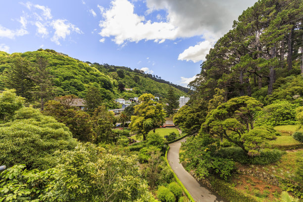 新西兰惠灵顿植物园