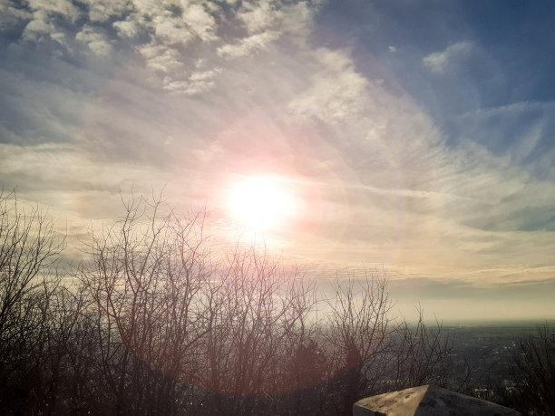 天空日光枝