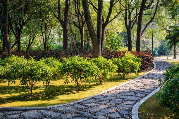 日光绿色公园