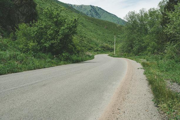 森林山路绿色