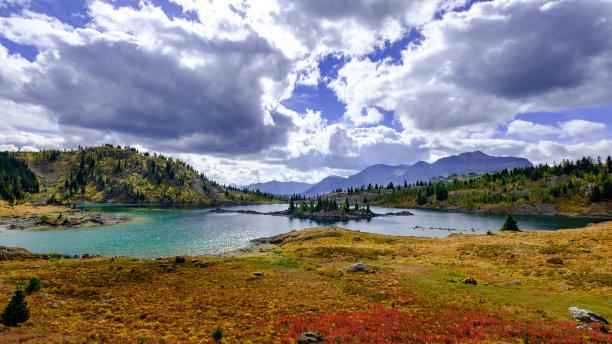 湖宽的草地