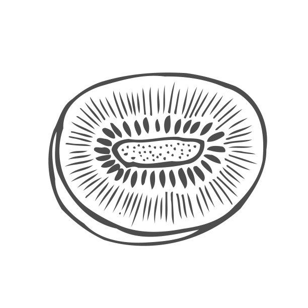 猕猴桃插画果汁