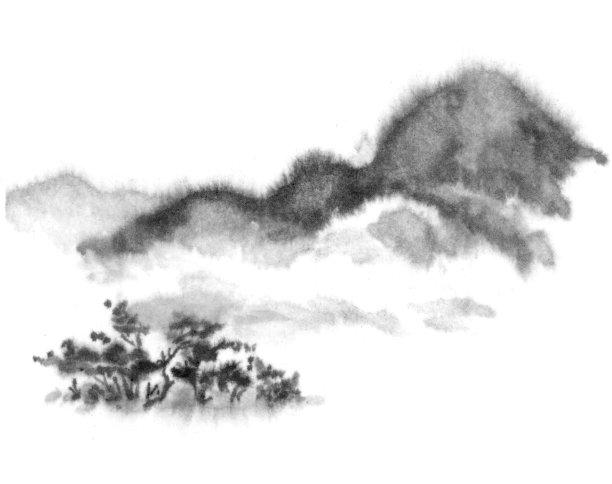 松树背景图像