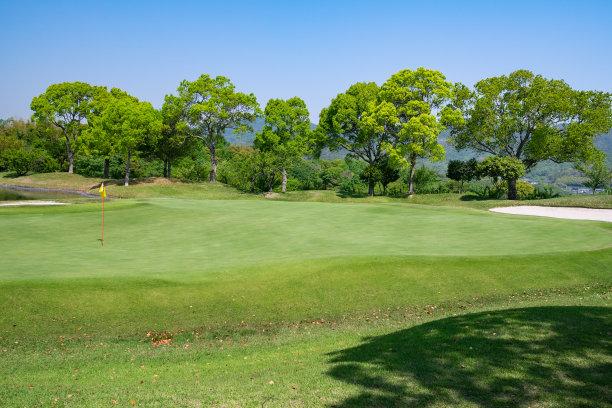 草,风景,高尔夫球运动