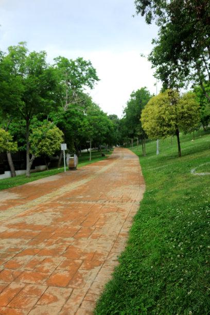 小路赫德公园草坪