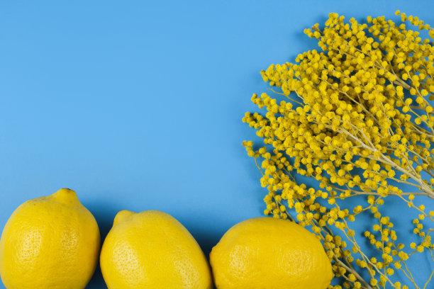 柠檬金合欢树贺卡