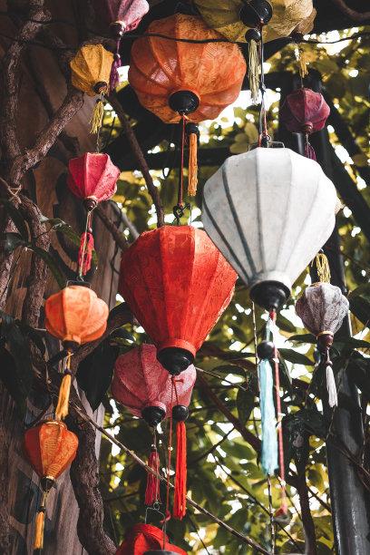 枝色彩鲜艳灯笼