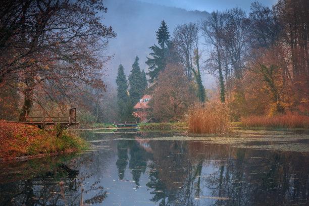 湖,森林,克罗地亚