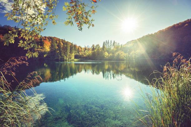 克罗地亚,湖,森林