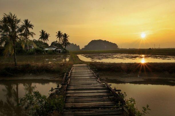 河流,乡村,稻田