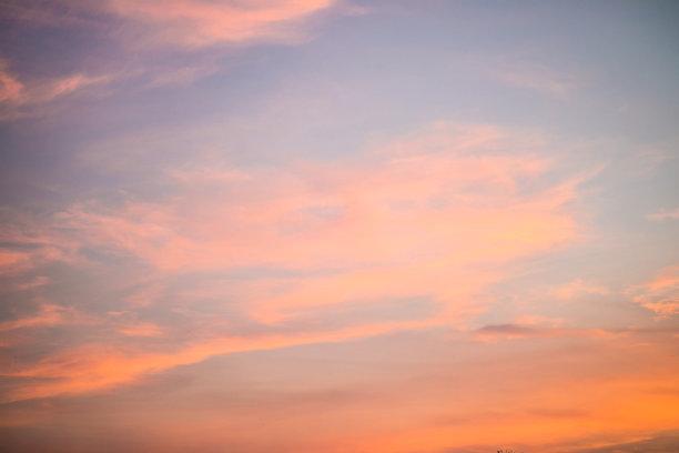 云,天空,鸟类