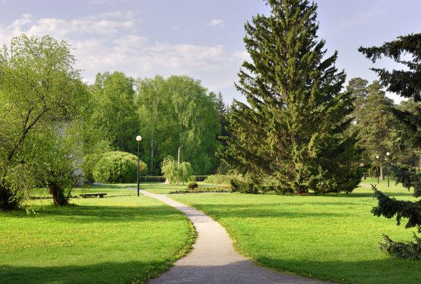 小路,景观设计,草坪
