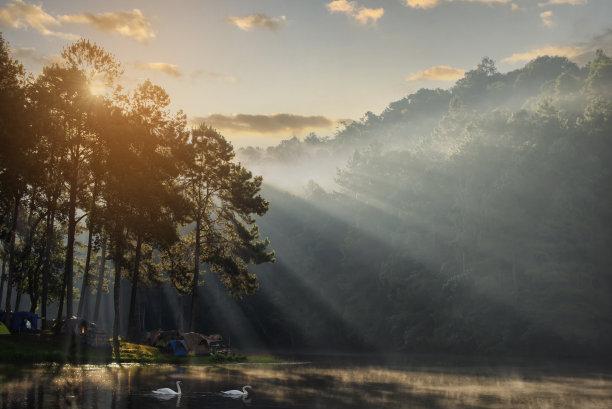 湖,泰国,早晨